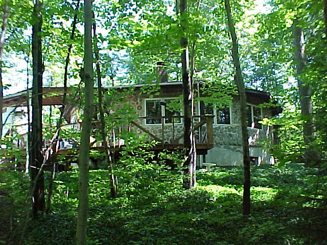 Here is the summer view of our cordwood house in the woods - The house in the woods ...